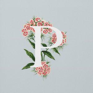 lettering letra p alfabeto em ingles