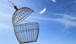 break free significado