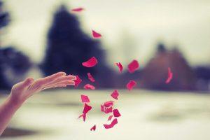 let go significado